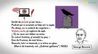 Bacovia - universul poetic
