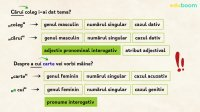 Adjectivul pronominal interogativ