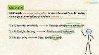 Posibilități combinatorii ale substantivului, grupul verbal. Aplicații